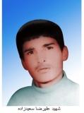 علیرضا سعیدزاده