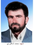 محمد شکوری