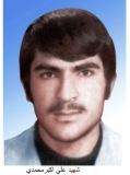 علی اکبر محمدی