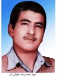 محمدرضا میداندار