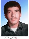 محمدتقی گمنام