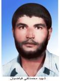 محمدتقی فیاضیان