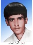 علی اسدی نرم