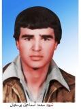 محمد اسماعیل یوسفیان
