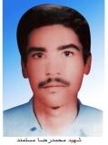 Photo of شهید محمدرضا مستمند