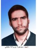 Photo of شهید سید جواد پروانه جلیلى