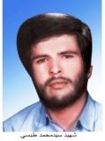 Photo of شهید سید محمد طبسی
