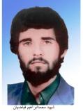 محمد ابراهیم فیاضیان