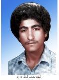 Photo of شهید حبیب کامل برون