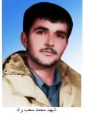Photo of شهید محمد محب راد