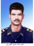 Photo of شهید محمدحسین اله وردی