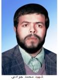 Photo of شهید محمد جوادی