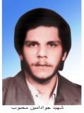Photo of شهید جواد امین محبوب