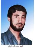 محمدعلی یزدانی