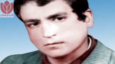 Photo of شهید سید محمد شعفی